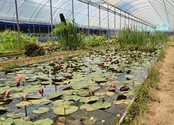 물가풍경 자연생태농원
